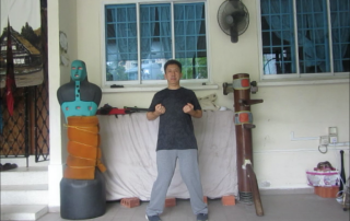 Wing Chun Stance YJKYM