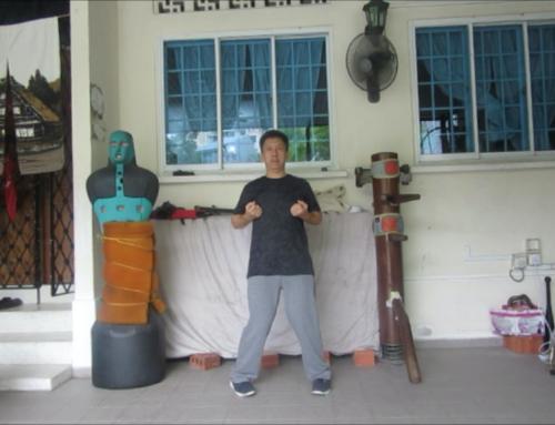 Wing Chun Singapore: YJKYM Wing Chun stance