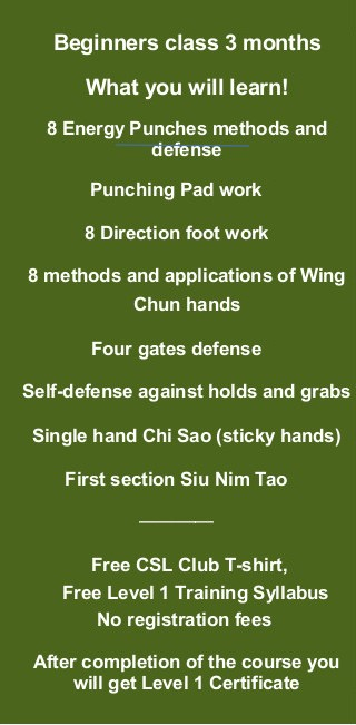Wing Chun Beginners Course_Syllabus