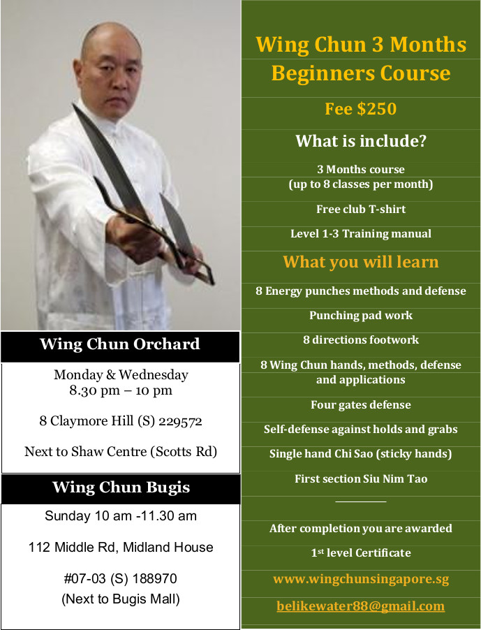 Wing Chun Singapore Beginners Course