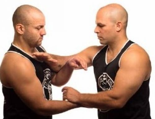 The Wing Chun chain punch.
